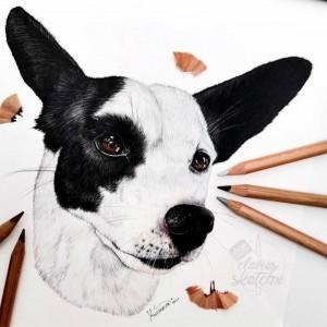 Svou další neuvěřitelnou a živou kresbou potěší @claires.sketchx tentokrát hlavně pejskaře 😍 Doufáme, že jich tady máme hodně 🥰  #dog #pejsek #pes #dogart #dogartwork #dogillustration #doglovers #art #illustration #artwork #drawing #drawings #dailydrawing #drawingart #drawingsketch #draweveryday #drawer #sketchbookdrawing #artdrawing #artistic #worldofpencils #pasteldrawing #womenwhodraw #girldrawing #sketchdrawing #handdrawing #realisticdrawing #pastelart #provytvarnikycz #provytvarniky